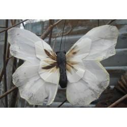 Vacker fjäril i vitt