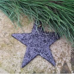 Glittrig platt stjärna i svart