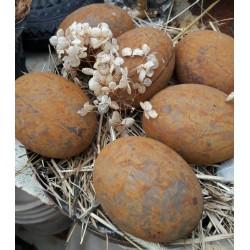 Rostigt ägg av metall