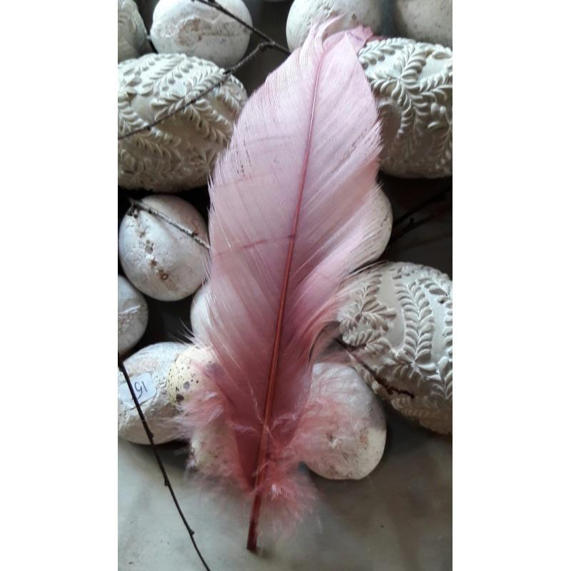 Gammelrosa fjäder