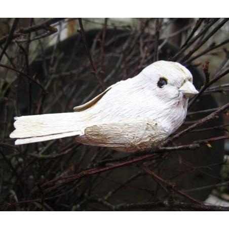 Söt fågel i cremevitt