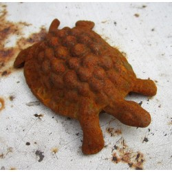 Rostig sköldpadda